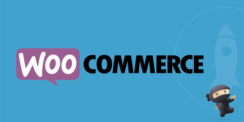 Manejo de Woocommerce en WordPress – ENVÍOS